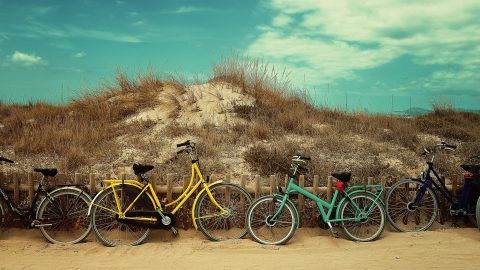 bicycles-1845607-1