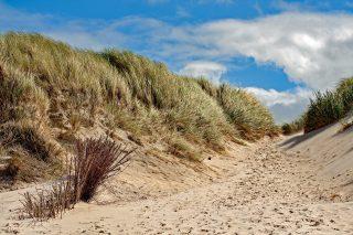 dune-2168428_1920